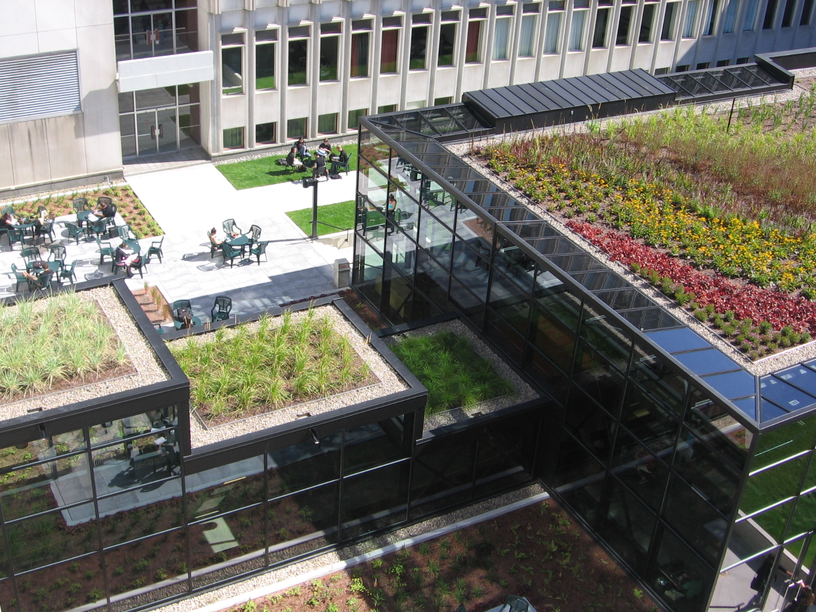 Green Roofs Roof 1 Consultants
